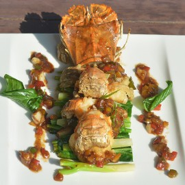 rock-lobster-seafood-lovers4-270x270-2
