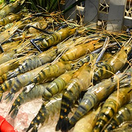 gallery-for-microsite-270x270-river-prawn-and-salmon2-2